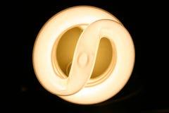Light source. Neon close-up Stock Image