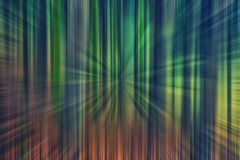 Light spectrum in forest. Colorful royalty free stock images