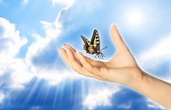 Light Spirit. A woman hand and butterfly over a blue sky with rays of light like a concept for spiritual symbol of soul stock photos