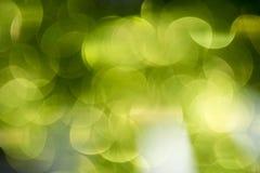 Light Spots Royalty Free Stock Image