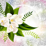 Light spring background with flowers Royalty Free Stock Photos
