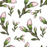Floral background of pink buds. Light spring texture. Seamless vector background for fabrics and tiles stock illustration