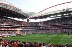 Soccer Stadium and Fans, Football Arena, Sports Crowd, Benfica Stadium, Lisbon stock photos