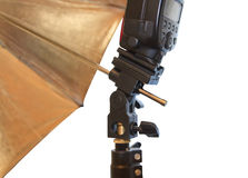 Light stand with flash and umbrella Royalty Free Stock Image