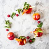 Alcohol cocktail for a summer party. Light summer refreshing drink with fruits and berries - sangria with mint leaves and raspberry berries are filed in a circle Royalty Free Stock Photography