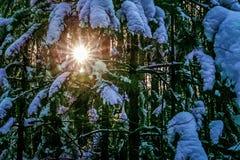 Light of the sun through stock photo