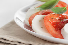 Light traditional caprese salad Stock Photography