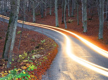 Light trails from car headlight  on rural road Royalty Free Stock Images