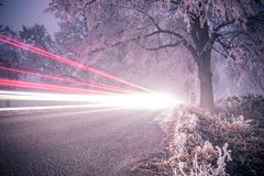 Light trails in winter, frozen road. Royalty Free Stock Photo