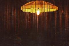 Light in a tree. Lantern in the city garden in Bangkok (Thailand Royalty Free Stock Photos