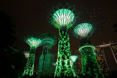 Light Tree Singapore. Light Tree in garden by the bay Stock Image