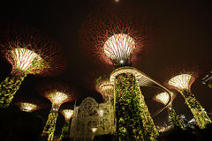 Light Tree Singapore. Huge light tree in Garden by the bay Stock Photography