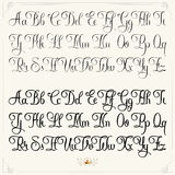 Light typeface. Hand drawn vector calligraphy tattoo style alphabet Royalty Free Stock Photography