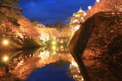 Light up of Hirosaki castle and cherry blossoms Royalty Free Stock Image