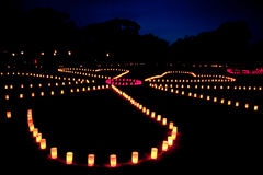 Light up at Nara park in Nara , Japan Stock Photos