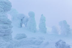 Light up snow monsters at Zao mountain Stock Photo