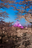 Light up at Tsuruga Castle & x28;Aizu castle& x29; surrounded by hundreds Stock Photos