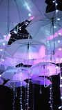 Light up umbrellas in the dark. Abstract, background, blue, bright, brighten, decorate, decoration, design, elements, event, festival, glimmer, glitter Stock Images