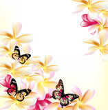 Light vector floral background with gardenia flowers and butterf Royalty Free Stock Images