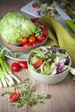 Light vegetable salad Royalty Free Stock Photos