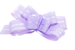 Light violet bow Stock Image