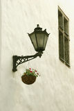 Light wall and flowers. Light wall  flowers and window in old Tallinn Stock Photography