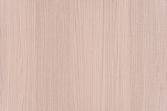 Light White Wood Texture Background with Copyspace Stock Photo