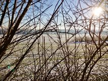 Light winter snow fall on rural farmland viewed through the branches Stock Photo