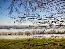 Light winter snow fall on rural farmland viewed through the branches Stock Image