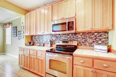Light wood cabinets with multicolored backsplash. And modern stainless steel appliances. Northwest, USA stock photo
