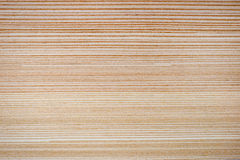 Light wood stripes Stock Images
