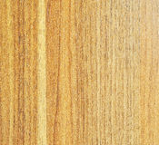 Light Wood Texture Stock Photography
