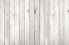 Light Wood Texture Background Royalty Free Stock Photography