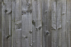 Light wooden fence texture. Weathered light wooden fence texture Royalty Free Stock Images