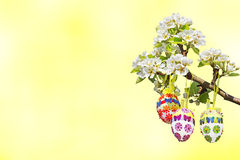 Light yellow background, branch with group of easter eggs Stock Photos