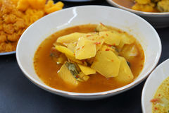 Light Yellow Curry Stock Photography