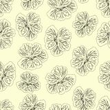 Light yellow Hibiscus flower print. Gorgeous nasturtium. Floral Pattern. Trendy seamless background. Fashion Texture. Line drawing. Vector botanical royalty free illustration