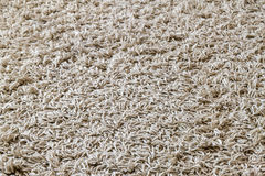Light yellow shaggy carpet sample, a closeup shot of rug backgro Stock Images