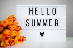 Lightbox with words `hello summer` and tulip flowers Royalty Free Stock Photos