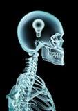 lightbulb ακτίνα Χ Στοκ Φωτογραφία