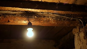 Lightbulb στο παλαιό υπόγειο του σπιτιού απόθεμα βίντεο