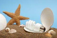 lightbulb ωκεάνιο μαργαριτάρι Στοκ Εικόνες