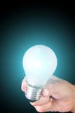 Lightbulb Royalty Free Stock Photo