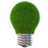Lightbulb. Made of green cactus. isolated on white Royalty Free Stock Photo