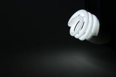 lightbulb Royaltyfri Foto