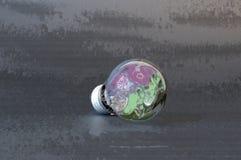 Lightbulb Στοκ φωτογραφίες με δικαίωμα ελεύθερης χρήσης