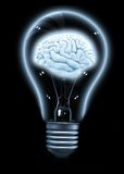 Lightbulb with a brain Stock Images