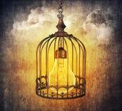 Lightbulb cage stock photos