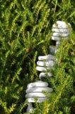 lightbulb energetyczny oszczędzanie Obraz Royalty Free