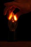 Lightbulb experiment Stock Photo